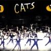 Film készül a Macskák musicalből?