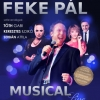 Feke Pál koncert Sopronban - Jegyek itt!