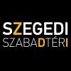 Disney musical a Szegedi Szabadtéri Játékok 2017-es műsorán!