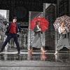 Ének az esőben a Budapesti Operettszínházban - Jegyek és szereposztás itt!