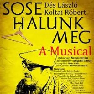 A Sose halunk meg című musicallel nyitja az évadot a Pannon Várszínház