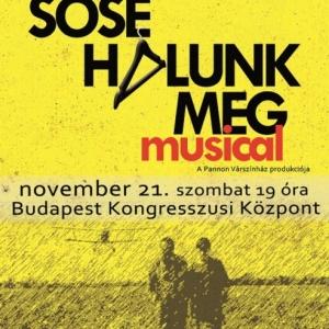 Sose halunk meg musical Budapesten! Jegyek itt!