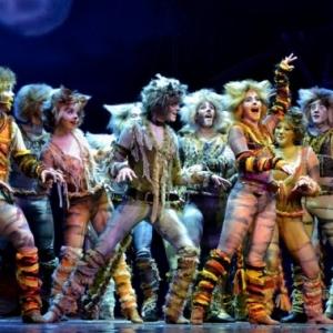 Macskák musical a Madách Színház sztárjaival 2020-ban a BOK Csarnokban - Jegyek itt!