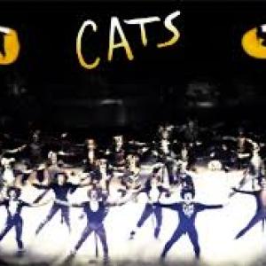 INGYEN nézheted meg a Macskák musicalt! Részletek itt!